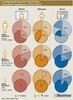 Leadgenerierung bei deutschen Interaktiv-Agenturen 2012-2013