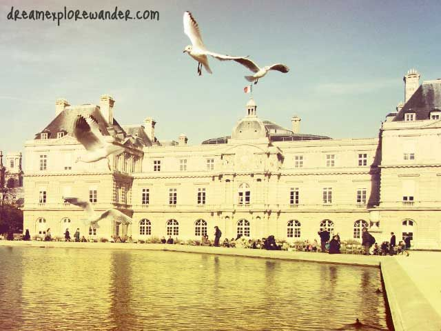 Birds, Jardin du Luxembourd, Paris