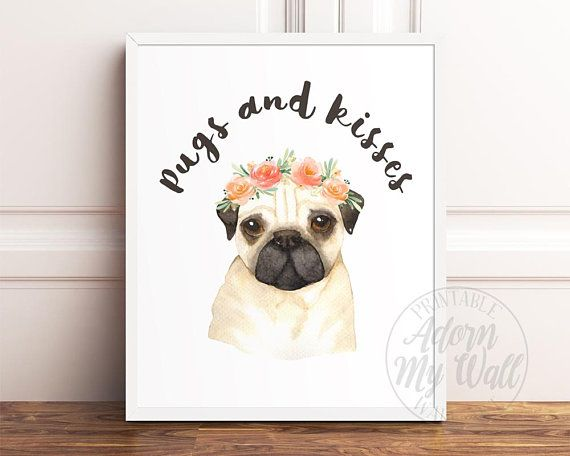 Pet Puppy Pug Breed Dog Pictures A4 PHOTO POSTER Print ONLY Wall Hanging Gift