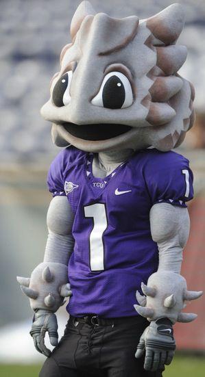 texas christian university u0026 39 s horned frog mascot  how do you make an unusual animal mascot look