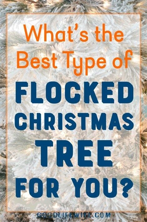 What the Flock?! How to Pick the Best Flocked Christmas Tree Good