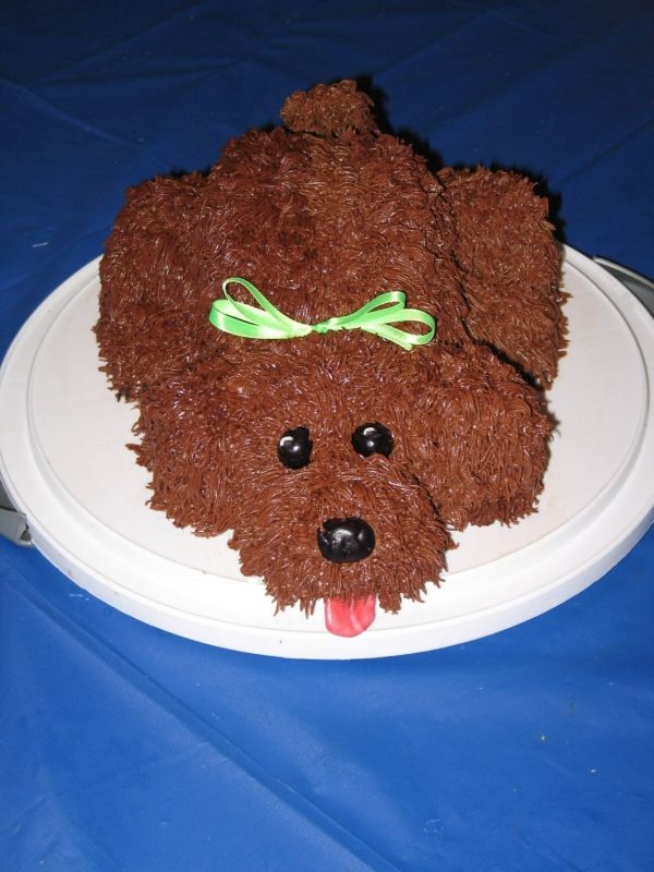 Birthday Cakes For Dogs Recipes Uk ~ Awesome cavapoo cake pinterest puppy dog
