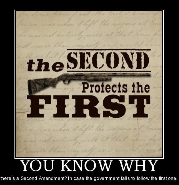 pro second amendment essay