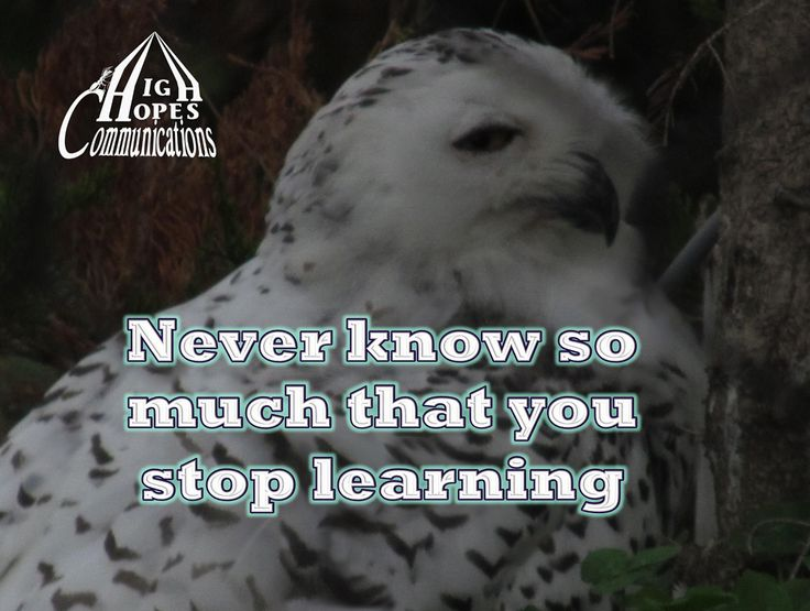 Never know so much that you stop learning www.highhopescommunications.ca