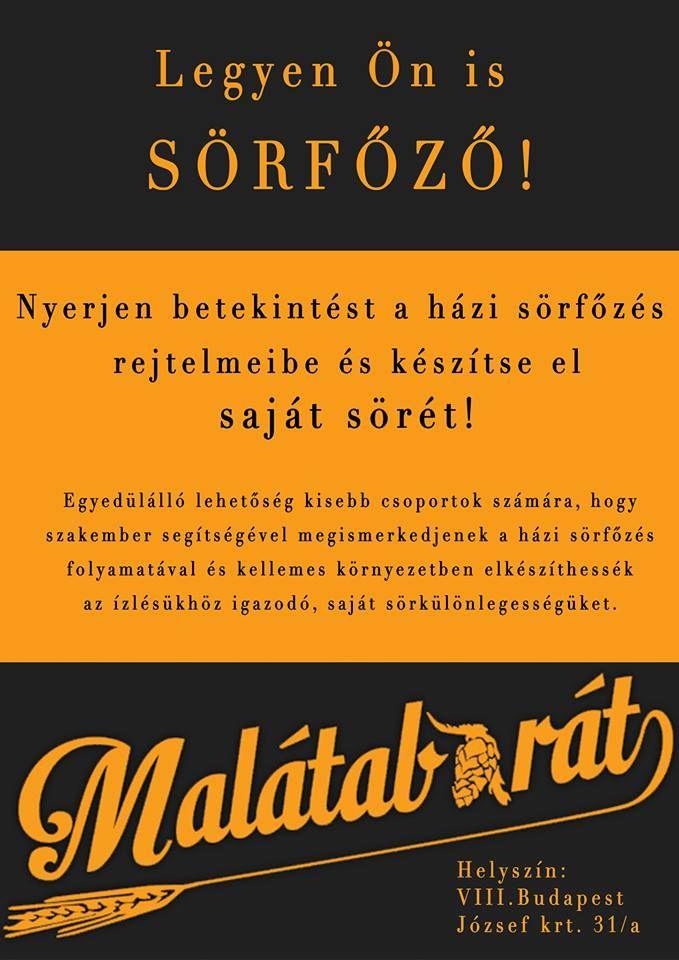 Apostolné Erzsi - Plakát