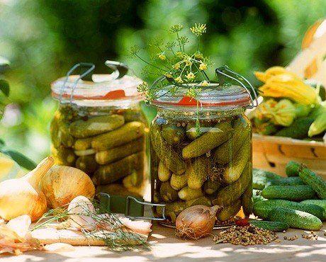 15 лучших рецептов огурцов