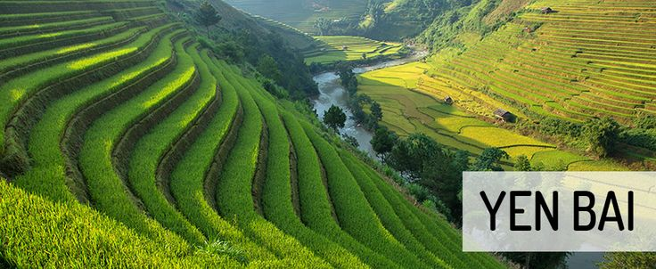 Rice terraces in Yen Bai / Mu Cang Chai. #vietnam #yenbai #mucangchai #rice #terraces #travel #wandering