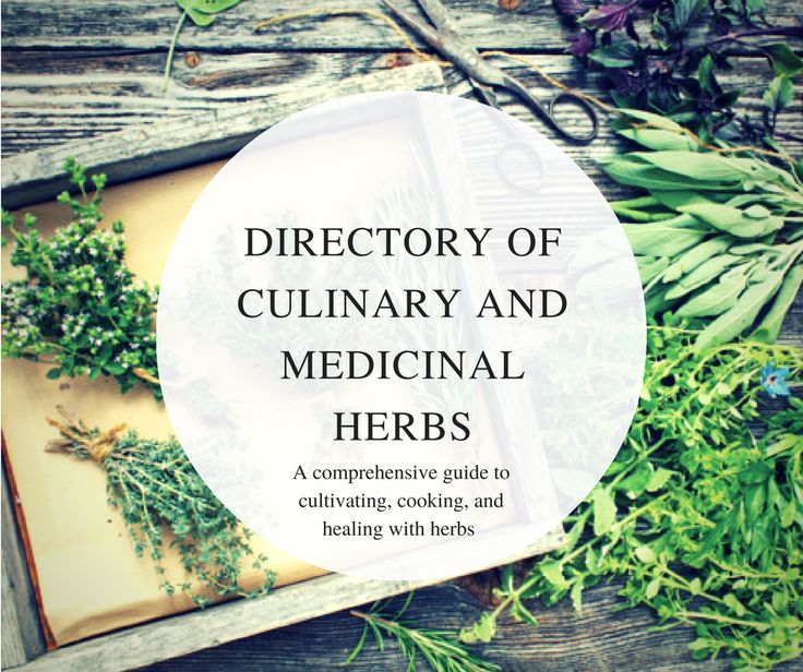 From soothing aloe to spicy horseradish, subtle-sweet marjoram to savory thyme, discover the exceptional flavors and gentle healing capabilities of more than 40 of the plant kingdom's finest here in the MOTHER EARTH NEWS Directory of Culinary and Medicinal Herbs