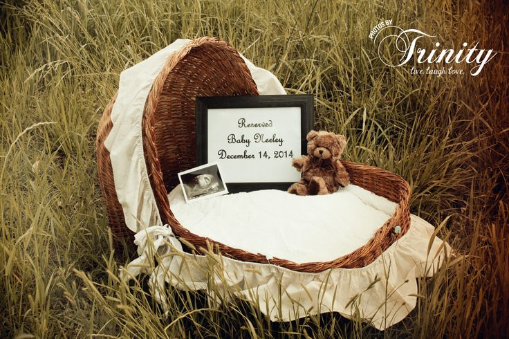 Pregnancy announcement, bassinet, country baby