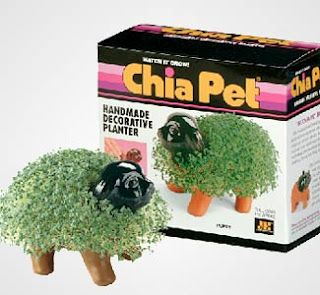 Who didn't get one of these for Christmas?: 1980, Cha Chia, Childhood Memories, 80S Flashback, Childhood Nostalgia, Of The, Chemistry Teacher, Fond Memories, Chia Pet