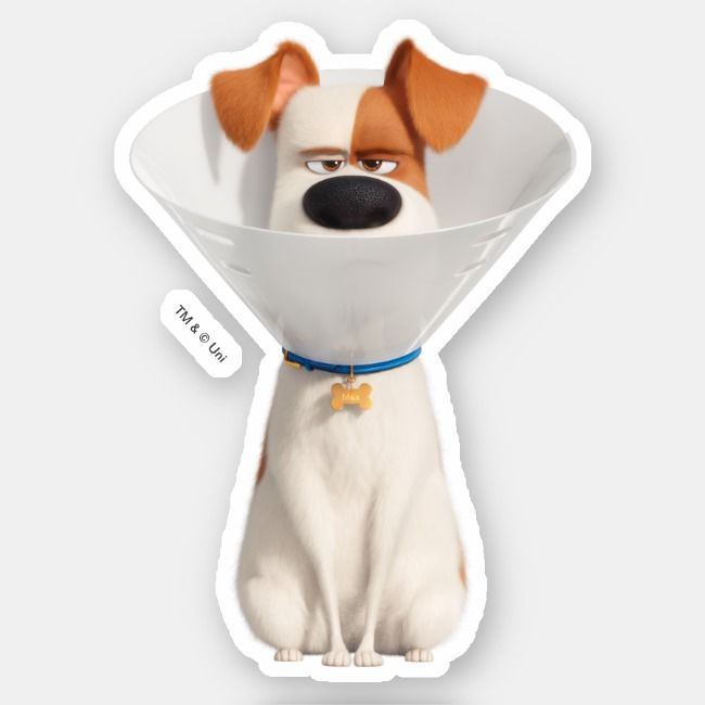 Secret Life Of Pets Max Really Sticker Zazzle Com Pet Max Secret Life Of Pets Pets
