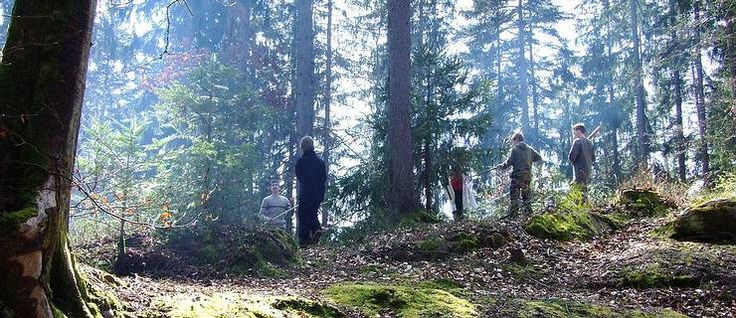 Waldspiele und Walderlebnisse - toll aufbereitete, nützliche Seite!