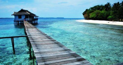 Karimunjawa surga bagi terumbu karang