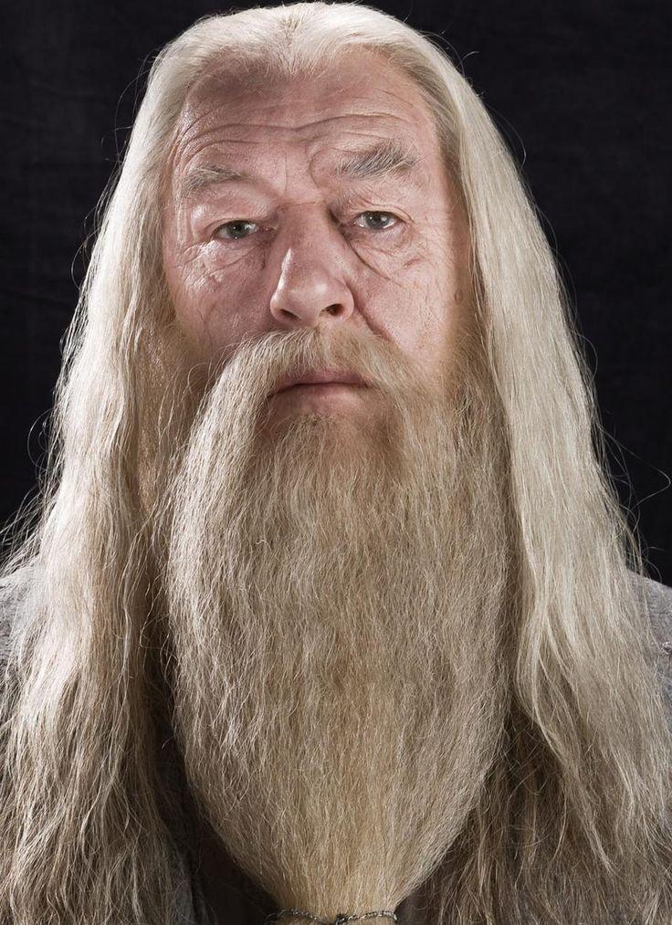 Альбус Персиваль Вульфрик Брайан Дамблдор (англ. Albus Percival Wulfric Brian Dumbledore) — профессор трансфигурации, директор Школы чародейства и волшебства Хогвартс, кавалер ордена Мерлина первого класса, Великий волшебник, Верховный чародей Визенгамота (Мудрейх в другом, неофициальном переводе), Президент Международной конфедерации магов. Известен как сильнейший волшебник своего времени. О детстве Дамблдора известно очень немного. Он родился в июле или августе 1881 года в Насыпном…
