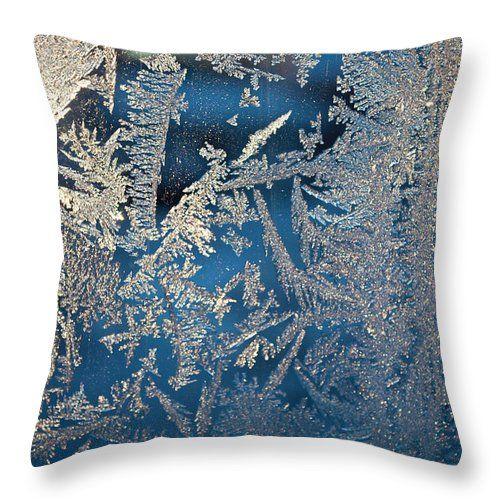 #Tamara SUshko #FineArtPhotography #FineArtLandscapes #Zen #Nature #HealingArt #Canvas #HomeDecor #art #ice #flowers
