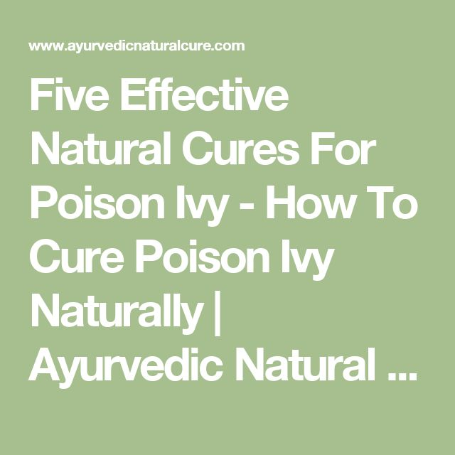 Five Effective Natural Cures For Poison Ivy - How To Cure Poison Ivy Naturally | Ayurvedic Natural Cure Supplements