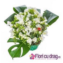 Cos cu frezii albe de 8 Martie http://www.floricudrag.ro/home/158-cos-cu-35-frezii-albe.html