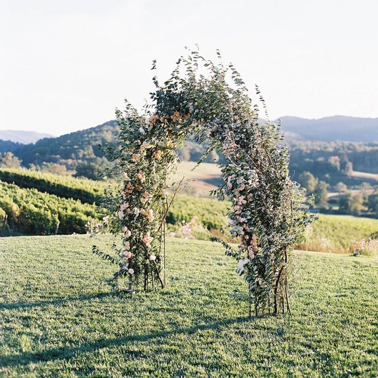 Floral wedding archway at Pippin Hill Farm & Vineyards