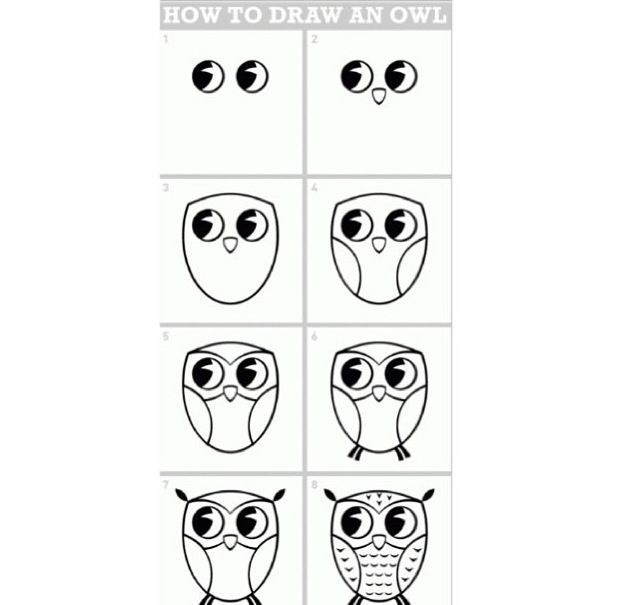 cute and easy way to draw an owl c create pinterest