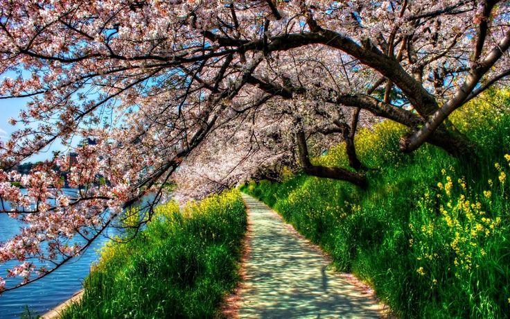 paisajes primaverales - Buscar con Google