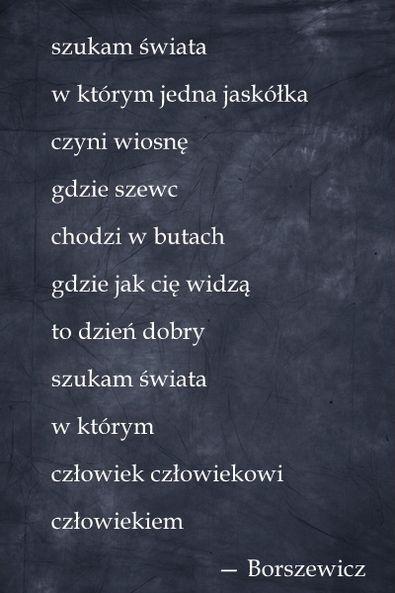 jarosław borszewicz.