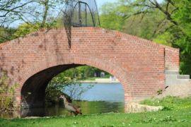 Nach der Sanierung erstrahlt nun auch wieder die Bogenbrücke im Kölner Stadtwald #kölnergrünstiftung #köln #stadtwald #sanierung #park #brücke #bogenbrücke #enten #grün #spenden #stiftung