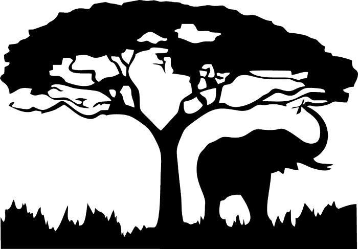 .Elefant Dschungel