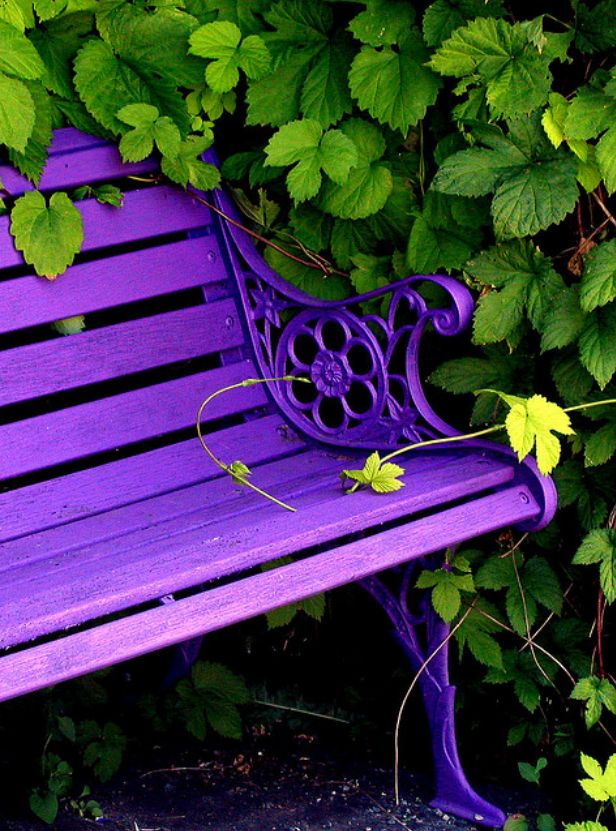 Purple Bedroom Bench: 340 Best Images About Purple Bedroom Decor (& A Few Other