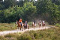 Campings in Nederland - 1052 ACi approved camping 0 tot 10 Nederland