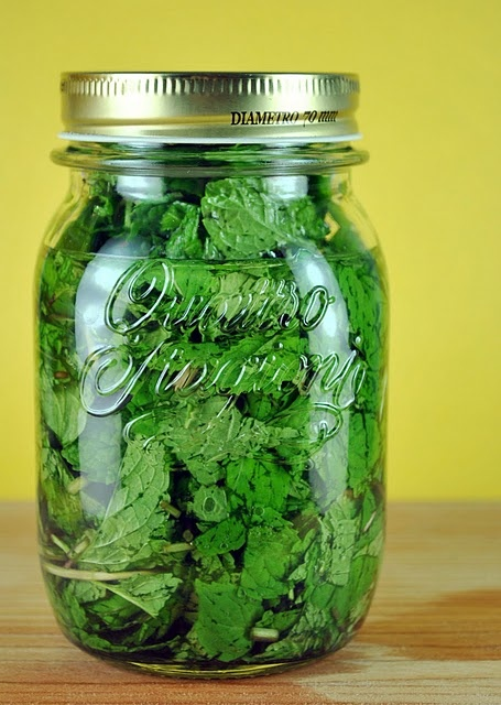 Homemade Mint Extract.  After all, we have to use all that mint for something!