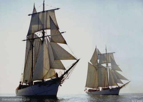 The schooners of the French navy heading for Saint Pierre and Miquelon
