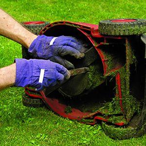 25 best ideas about lawn care on pinterest diy for Basic garden maintenance