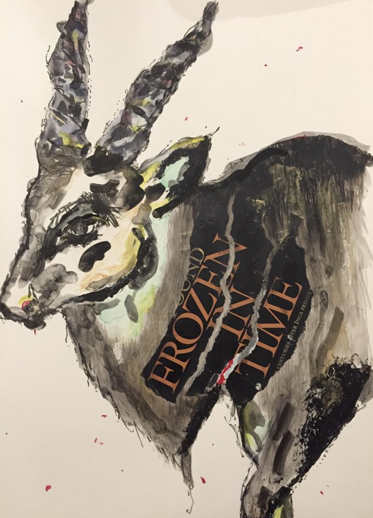 Kudu - collage with watercolour and charcoal