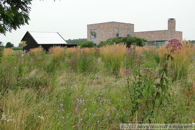 273 best piet oudolf privat garden hummelo nl images for Piet oudolf landscape architect