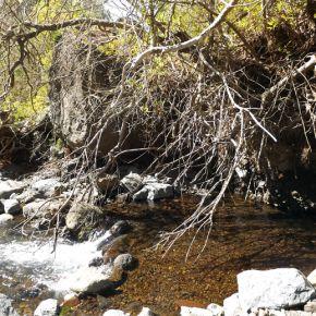 Parque Nacional de la Caldera de Taburiente Isla de #La Palma #canarias