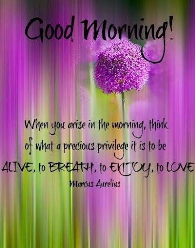 If you are reading this it is a  Good Morning or maybe a Good Afternoon!