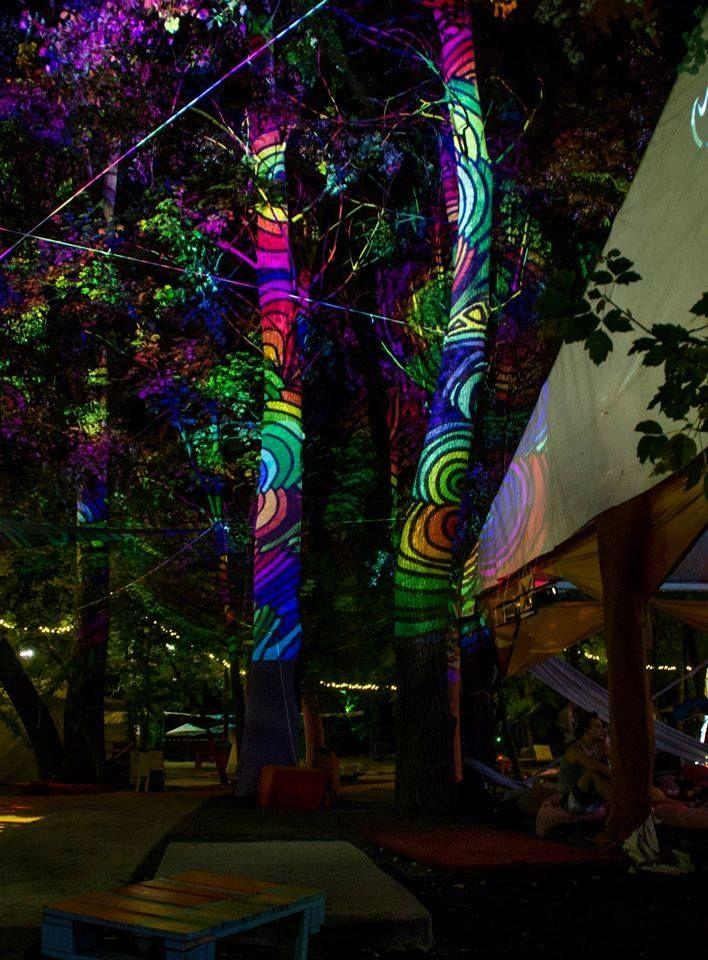 Fák, bokrok - fényfürdő - Night Projection fényfestés  Sziget Festival Official 2015 - Night Projection fényfestés  #Sziget #NightProjection #fényfestés #raypainting #visuals