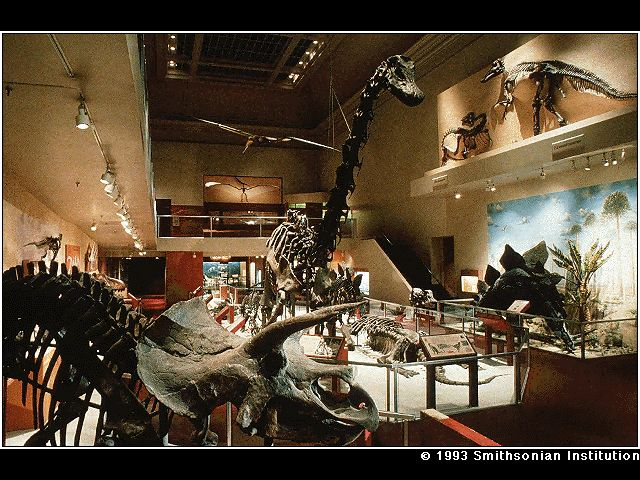 Foyer Museum Washington Dc : The dinosaur hall national museum of natural history at