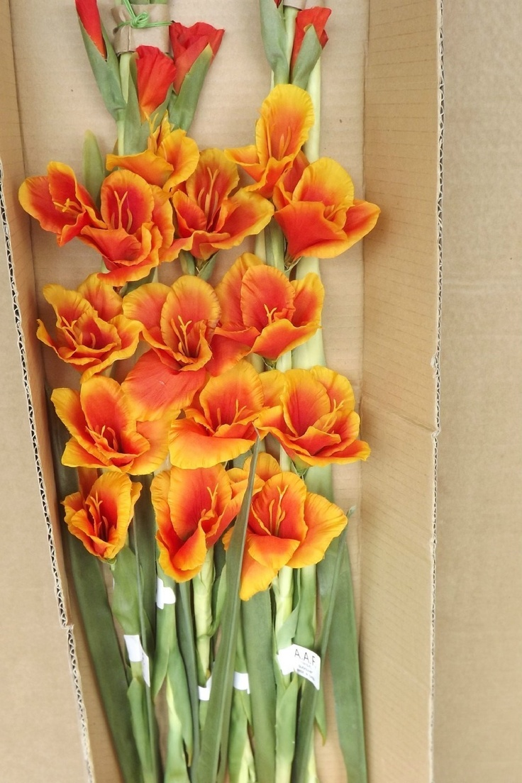 27 best artificial arrangements images on pinterest artificial aldik 49 inch tall silk gladiolus flower flame color box of 6 new http mightylinksfo