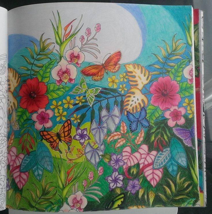Magical Jungle Colouring Book Johanna Basford Butterflies And Flowers