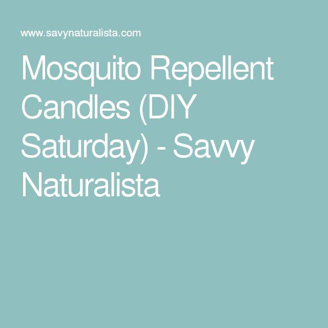 Mosquito Repellent Candles (DIY Saturday) - Savvy Naturalista