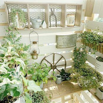 こちらは、広いお庭がないから…と、今までガーデニングを諦めていた方にもおすすめのDIY方法です。団地のベランダに手作りの棚を作っておしゃれにディスプレイしていますね。白×グリーンの雰囲気がとてもナチュラル。幅を広くとれない時は、このように縦を活用するのもアイデアですね。