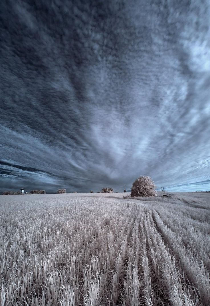 #5: Vanishing Point occurs when most all lines are continuing in one direction and vanish in the distance. In this picture both the lines from the sky and field are all vanishing on the horizon line.