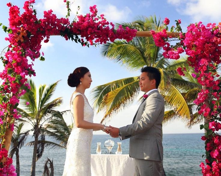 Explore The Beauty Of Caribbean: Best 25+ Bamboo Wedding Arch Ideas On Pinterest