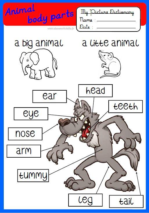 anglais, CP, CE1, CE2, CM1, CM2, animal, corps, parties, body, dictionnaire, dictionary, vocabulaire, école, classe