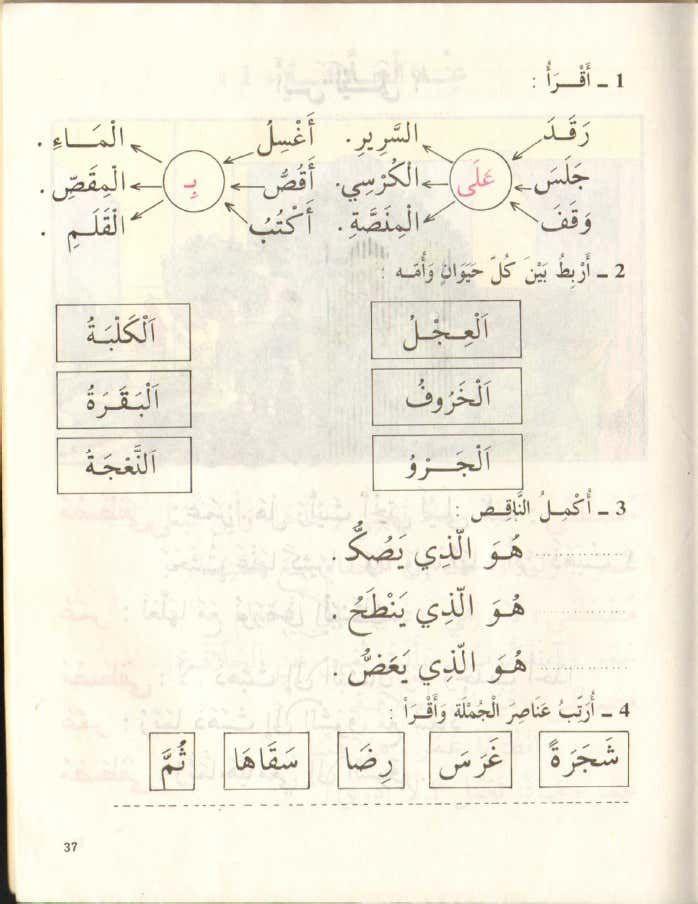 كتاب القراءة السنة اولى اساسي قديم اقرأ الجزء الثاني الجزائر Learn Arabic Language Learning Arabic Arabic Language