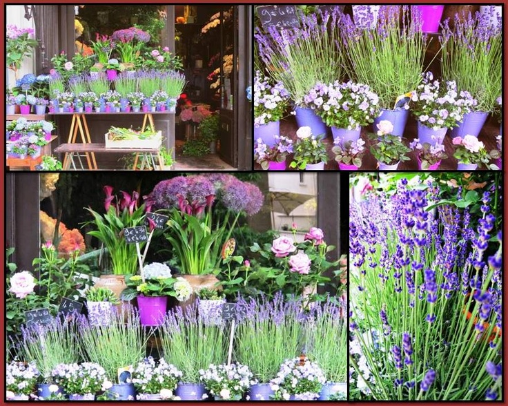 love this flower shop display