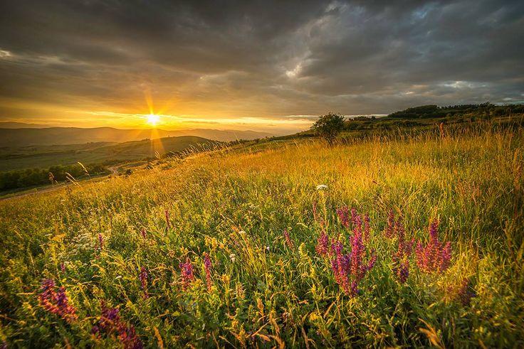 Blăjani este o comună situată în județul Buzău, la doar 25km de oraș. Este un loc aflat între dealuri, fix în mijlocul naturii! În proximitatea comunei nu există niciun obiectiv turistic important, dar zona merită a fi vizitată și fotografiată pentru peisajele mirifice prezente în orice anotimp.