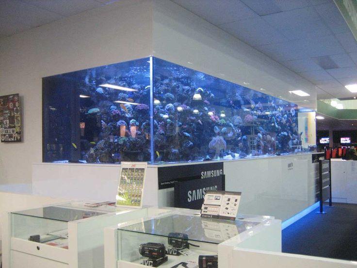 Large Size Saltwater Wall Mounted Aquarium In The Office Aquarium Design Wall Aquarium Aquarium
