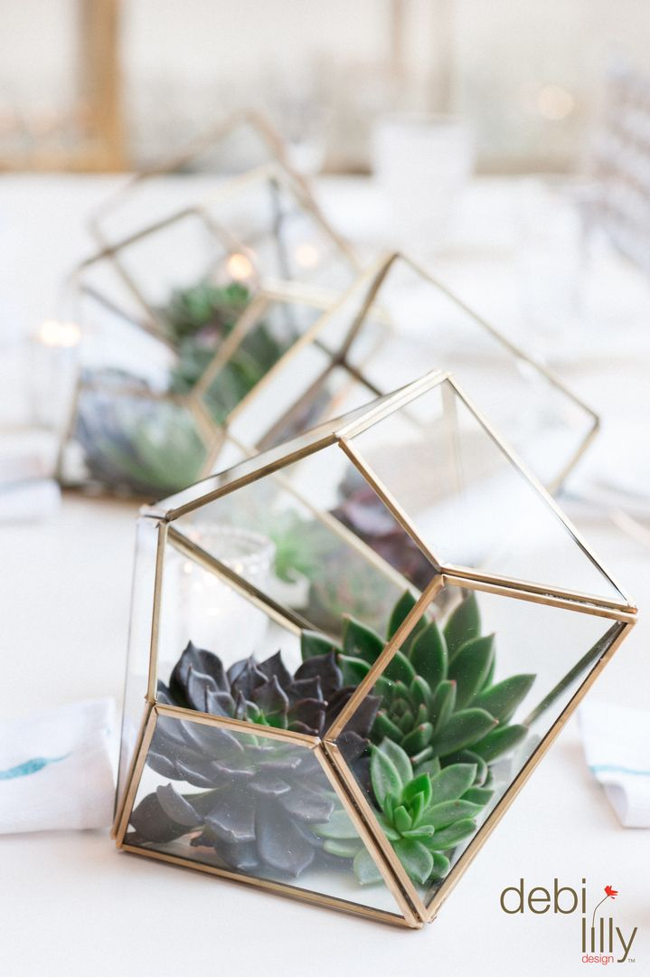 Revamp your drab workspace Adding fresh succulents to